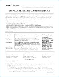 Resume Maker Free Online Enchanting Resume Maker Professional Free Slintco