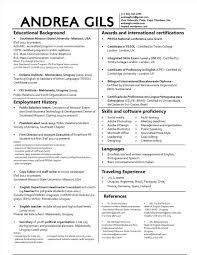 Resume Font Size Resume Font Size Best Font Size For Resume Good