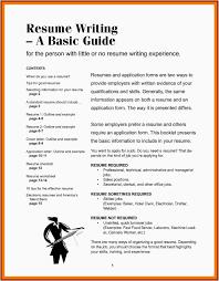 Summary Ideas For Resume Resume Work Template