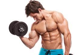 Fitness bilder