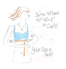 measure your bra size totm time of the month how to figure out your bra size