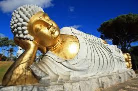 buddha buddha buddha statue statue