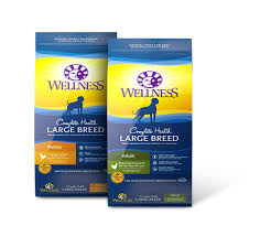 Wellness Large Breed Complete Health Puppy Deboned Chicken Brown Rice Salmon Meal Recipe Dry Dog Food 30 Lb Bag