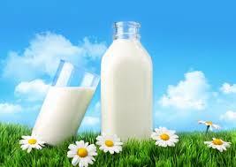 Средняя цена в марте на молоко составила 40,87 руб./кг