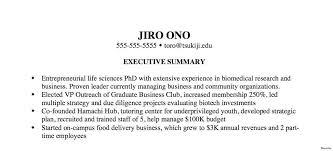 Executive Summary Resume Examples Enchanting Executive Summary Resume Finance Example Mission Administration Govt