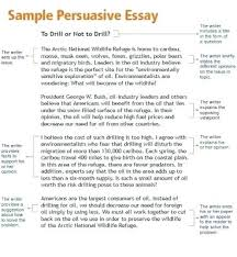 th grade argumentative writing essay examples opinion article  6th