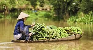 Resultado de imagen para vietnam