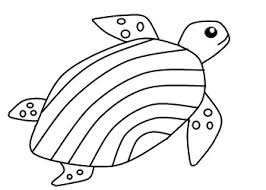 Small Picture Simple Turtle Drawings Easy Drawing Hqdefaultjpg Coloring Pages