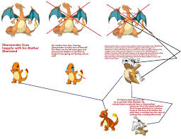 Charmander Evolution Chart Chart Thing Explaining My