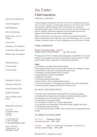Best Resume Format For Executives Fascinating Executive Resume Formats Zoroblaszczakco For Best Resume Format For