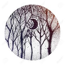 Woodland Winter Night Tree Twigs Scenery With Crescent Moon