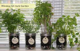 how to make your own window herb garden