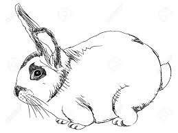 Isolated Cartoon Outline Rabbit On White Illustration Royalty Free