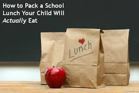 example about essay on school lunches do school lunches contribute to childhood obesity