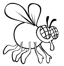 fly coloring pages page animals printable firefly free