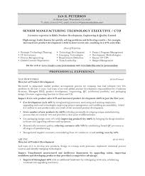 CTO Resume Sample