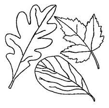 Small Picture Drawing of Fall Leaf Coloring Page NetArt