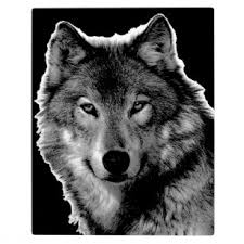 wolf face black and white. Plain Black Black U0026 White Wolf Artwork Plaque With Face And F