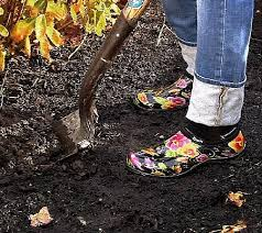 best gardening shoes. 106 Best Sloggers~ Garden Shoes \u0026 Boots Images On Pinterest | Ankle Booties, And Clogs Gardening