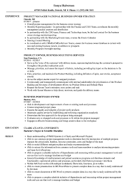 Business Owner Resume Business Owner Resume Samples Velvet Jobs 41