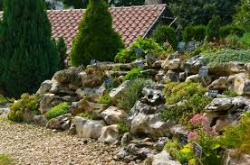 Small Picture Alpines Rock Gardens