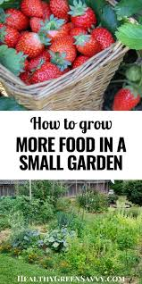 grow more food in a small garden