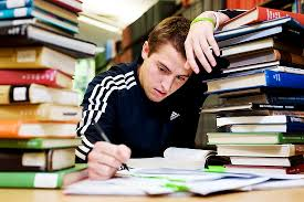 professional essay writers services for college
