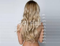 Hair Length Chart Inches Sophie Hairstyles 39717