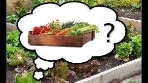 best garden vegetables. The Best Vegetables To Grow In Your Garden - Choosing Tastiest, Easy-to-Grow Plants YouTube