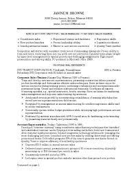 Resume Writer Online Simple Resume Writing Online Resume Writer Jobs Freelance Resume Writing
