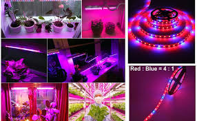 OUYAWEI 5M 12V LED <b>Plant Grow Strip Light</b> Full Spectrum ...