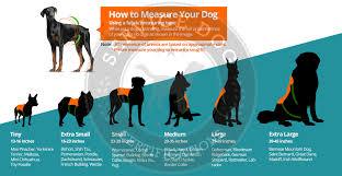 Turbo Dog Mm Neoprene Dog Vest Rigem Right Waterfowl Dog