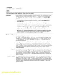 Beautiful What Is The Proper Font Size For A Resume Business Document