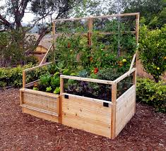 wooden raised garden bed