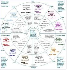 Chart Showing Signs Houses Etc Astrology Chart Houses