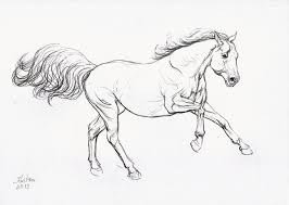 Small Picture The 25 best Easy horse drawing ideas on Pinterest How to draw