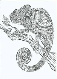 Line Art Doodle Zentangle Adult Coloring