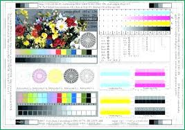 Color Laser Printer Test Page Print Epson Pa Betterfor