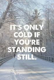 Cold Quotes Beauteous 48 Cute Cold Weather Quotes Quotes Pinterest Cold Weather