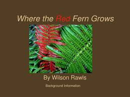 PPT - Where the Red Fern Grows PowerPoint Presentation, free download -  ID:5374678