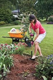 How To Plant A Crepe Myrtle With Success Step 1