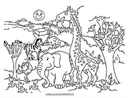 Cartoon Animals Coloring Pages To Print Australian Baby Cute Animal