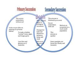 Primary And Secondary Succession Venn Diagram Ecological Succession Primary Amp Secondary Succession T