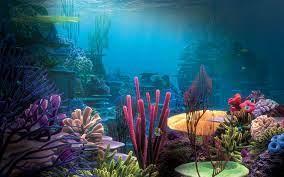 Best 34+ Beautiful Aquarium Backgrounds ...