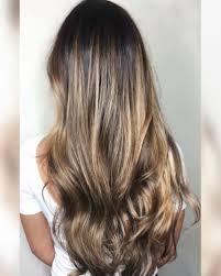Brunette Color Hair Art Colour Wig