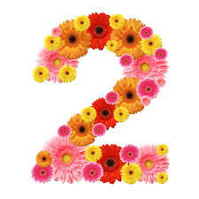 numerology secrets of your birthday 2nd 11th 20th 29th