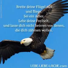 Spruchkarte Mit Zitat Breite Deine Flügel Aus Und Fliege Sei Ein