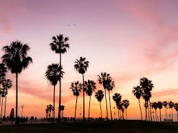 cool los angeles wallpaper options to