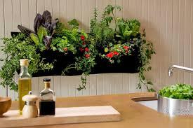 indoor gardening ideas. Indoor Garden \u2013 Fresh \u0026 Landscaping Exciting Apartment Gardening Ideas As D