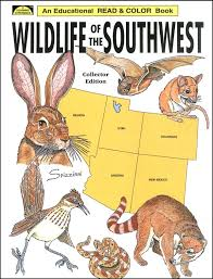 wildlife of the southwest coloring book main photo cover